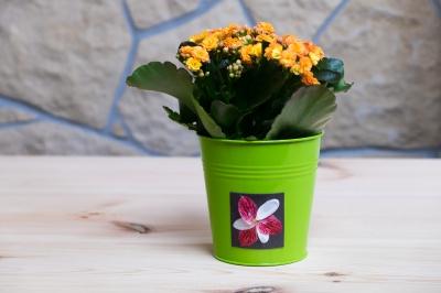 Květinová magnetka na plechovém květináči.